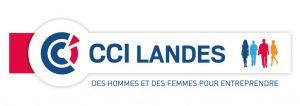 CCI L