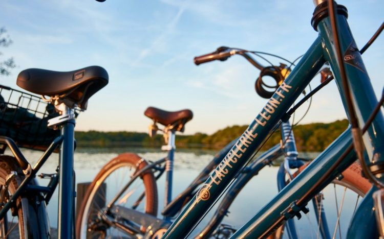 Bike rental in léon